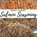 Salmon Seasoning